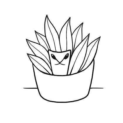 C A T - Plant Guardian