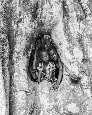 Children at the Tree