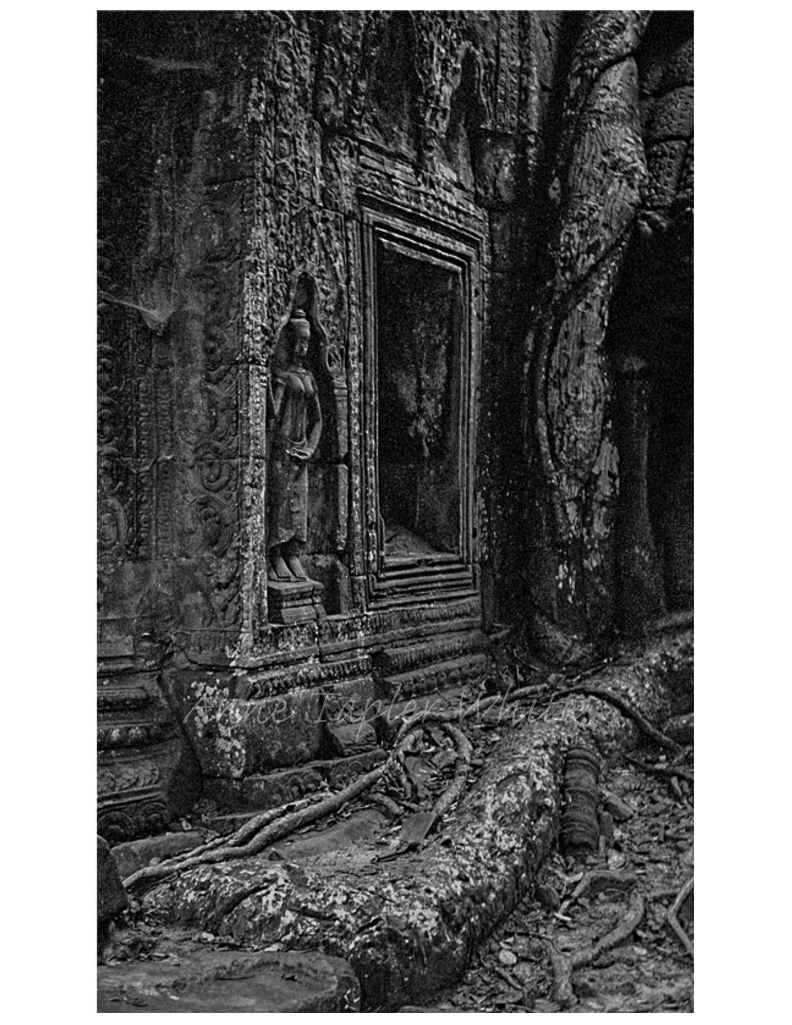 Ankor Wat #1