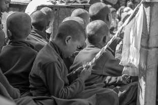 Young Monk #3