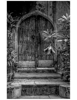 Doorway with Leaves