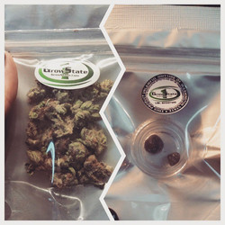 Come on in and get a half gram of WSU fudge wax and 2 grams of animal cookies! #thegreendoor #buckle