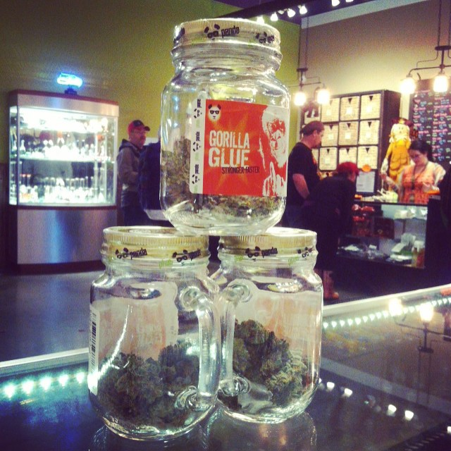 #masonjars of #weed #phatpanda #gorillaglue #420 #quarter #deals #legalweed #recreationalmarijuana #