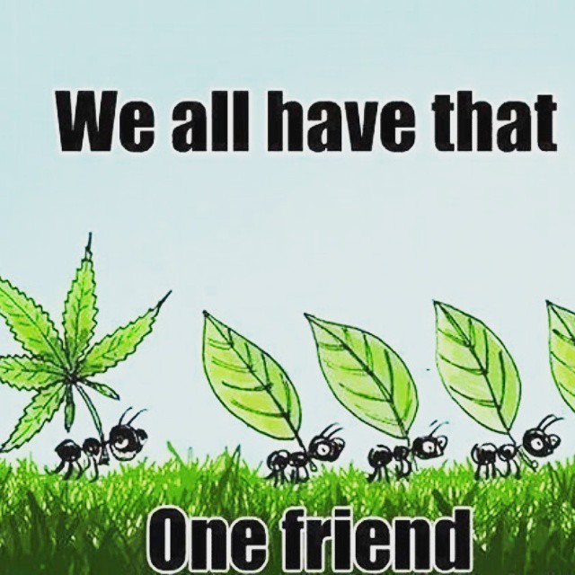 Be that friend at log show! Stock up for the weekend festivities we have some killer deals!  #thegre