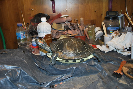 atelier sculpture céramique contemporaine tortue