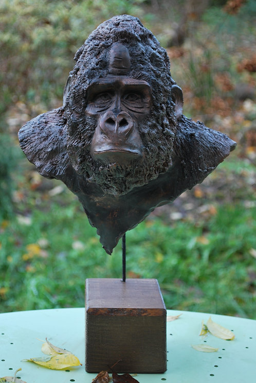 Buste gorille