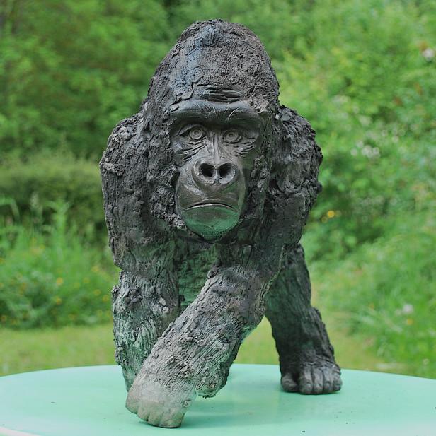 La pose du gorille