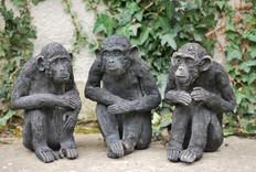 Petits secrets entre nous, chimpanzés