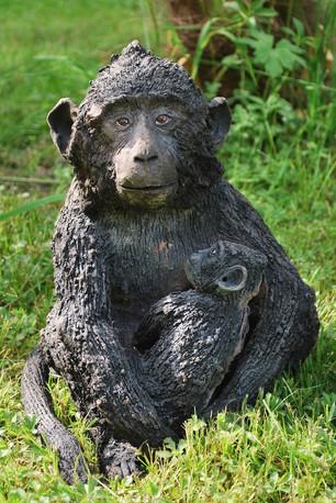 maman macaque et son bébé