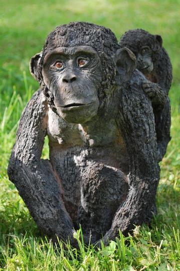 maman chimpanzé et son bébé