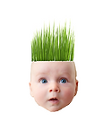 2019 Baby2 with grass head.png