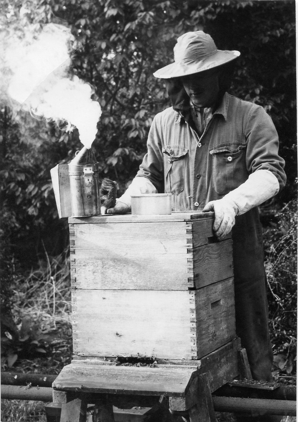 White male wearing beekeeping suit about to remove the lid of a bee hive. A smoker sits on top of the hive with smoke billowing out of its spout.
