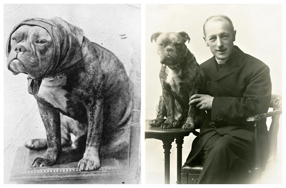 Two black and white photographs side by side. In the left-hand photograph a dog sits on a chair wearing a headscarf. In the right-had photograph a white man in clerical dress sits on a chair. Next to him the same dog sits on a table.
