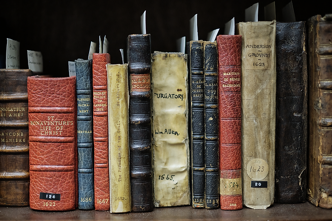 Row of different sized books in various bindings