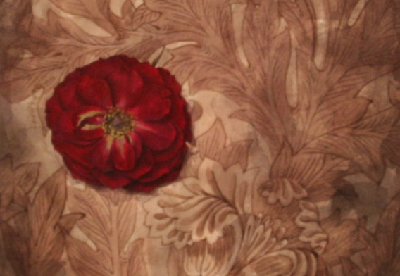 Blackthorn & Rose
