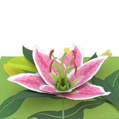 Lovepop: Lily Bloom 3D Card