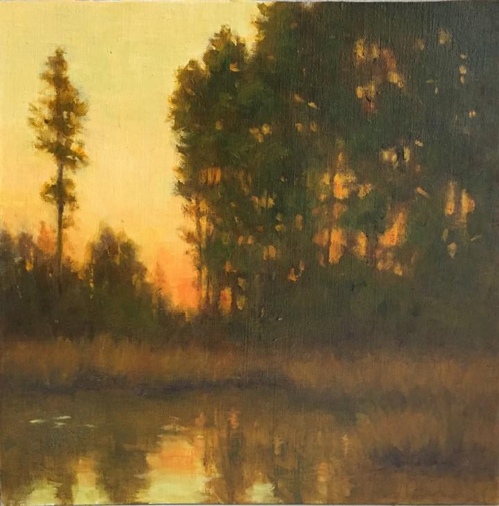 Pineywoods Evening
