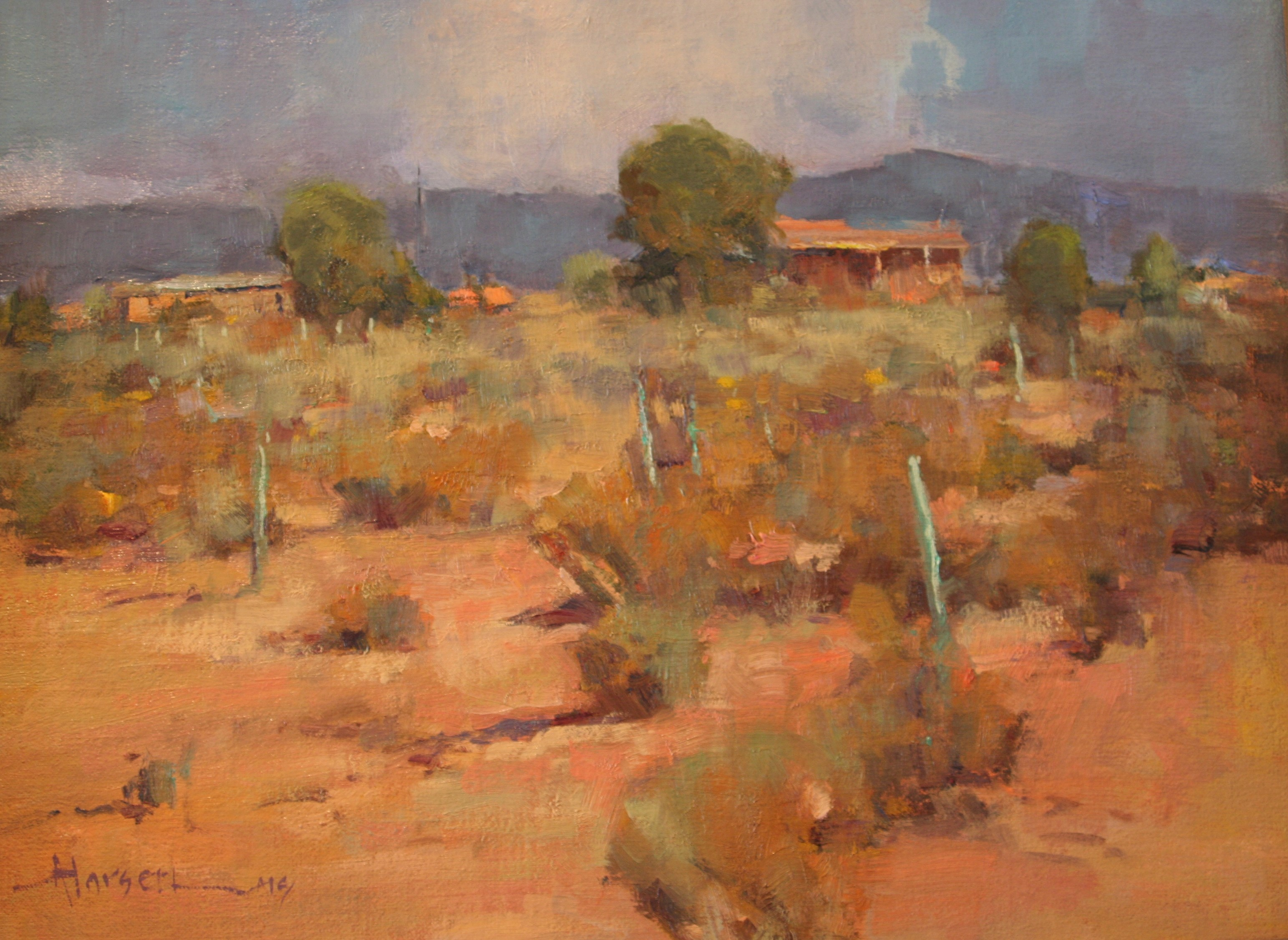 """West Texas Color"""