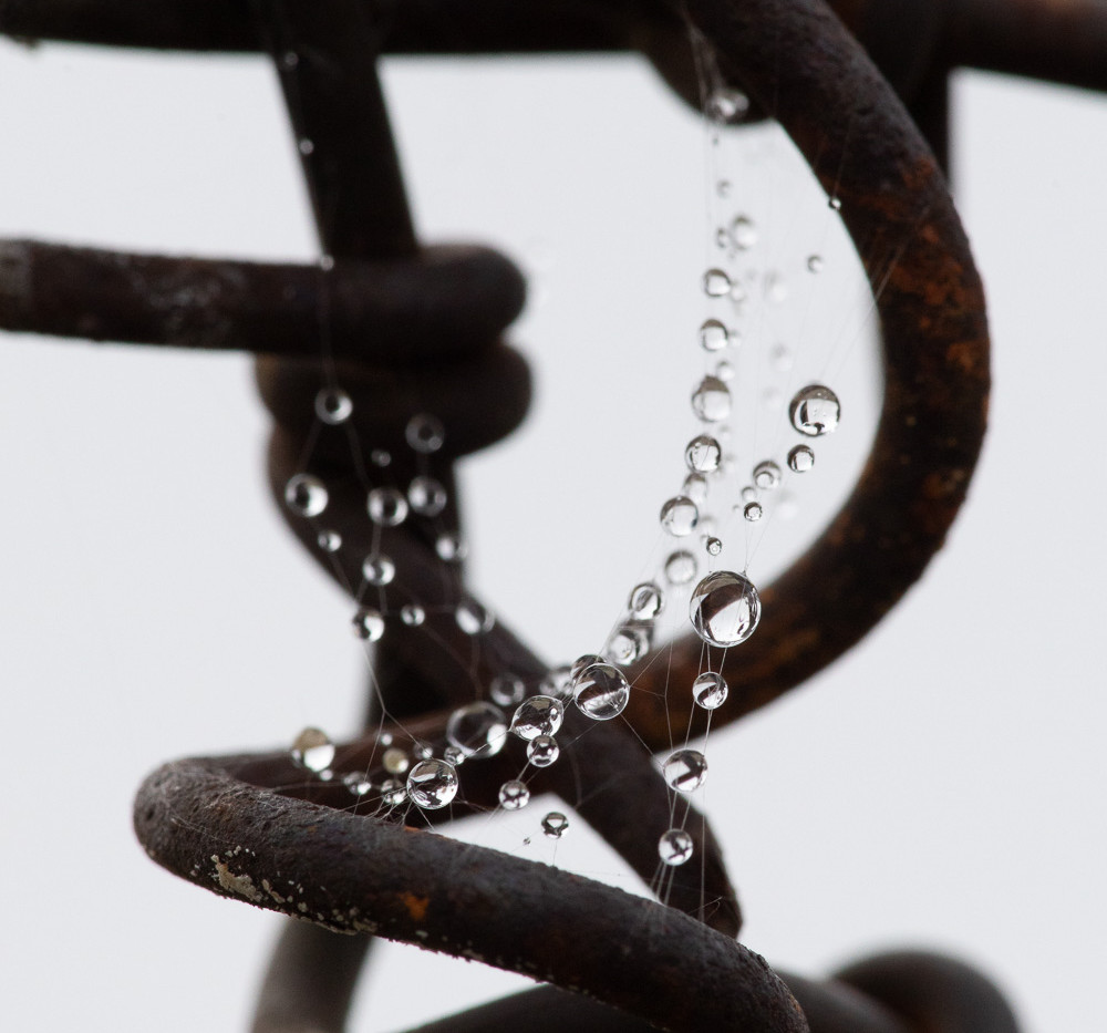Barbed Wire Jewels