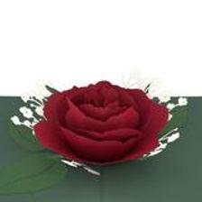 Lovepop: Red Rose Bloom Popup Card