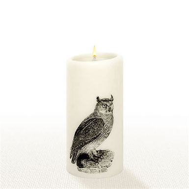 "Lucid Forever Candle 6"" Owl"