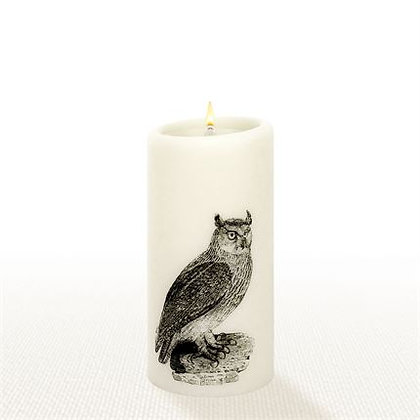 """Lucid Forever Candle 6"""" Owl"""
