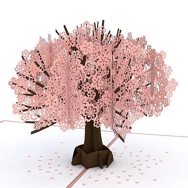 Lovepop: Cherry Blossom 3D Card