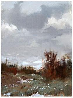 Desert Grays