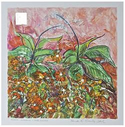 Summer: Marigolds & Shade Flowers