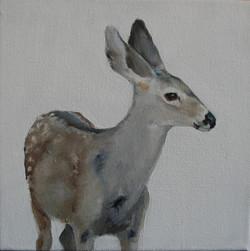 Mule Deer I (SOLD)