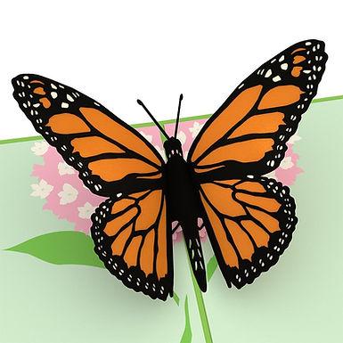 Lovepop: Butterfly Pop Up Card