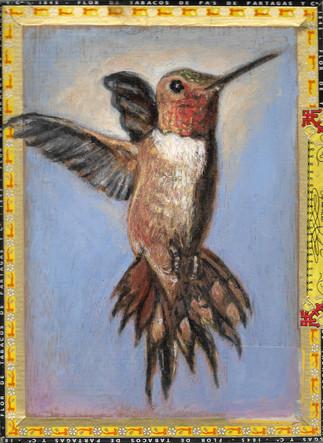Hummingbird / Partagas