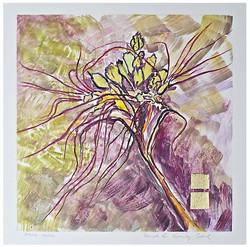 Spring Yucca