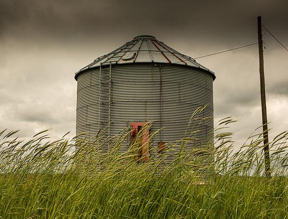 Dark Skies and Grain.jpg
