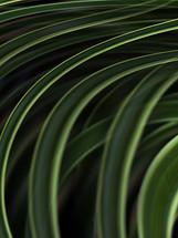 KT_1309_Do Something Green_.jpg