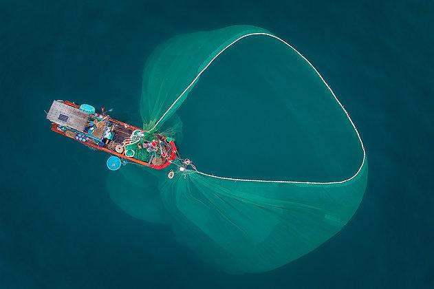 Fish Net 2