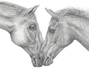 Horses%20Pencil%202021_edited.jpg