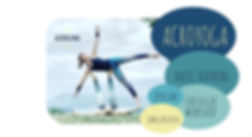webseiteflyerweiss-acrolina.jpg