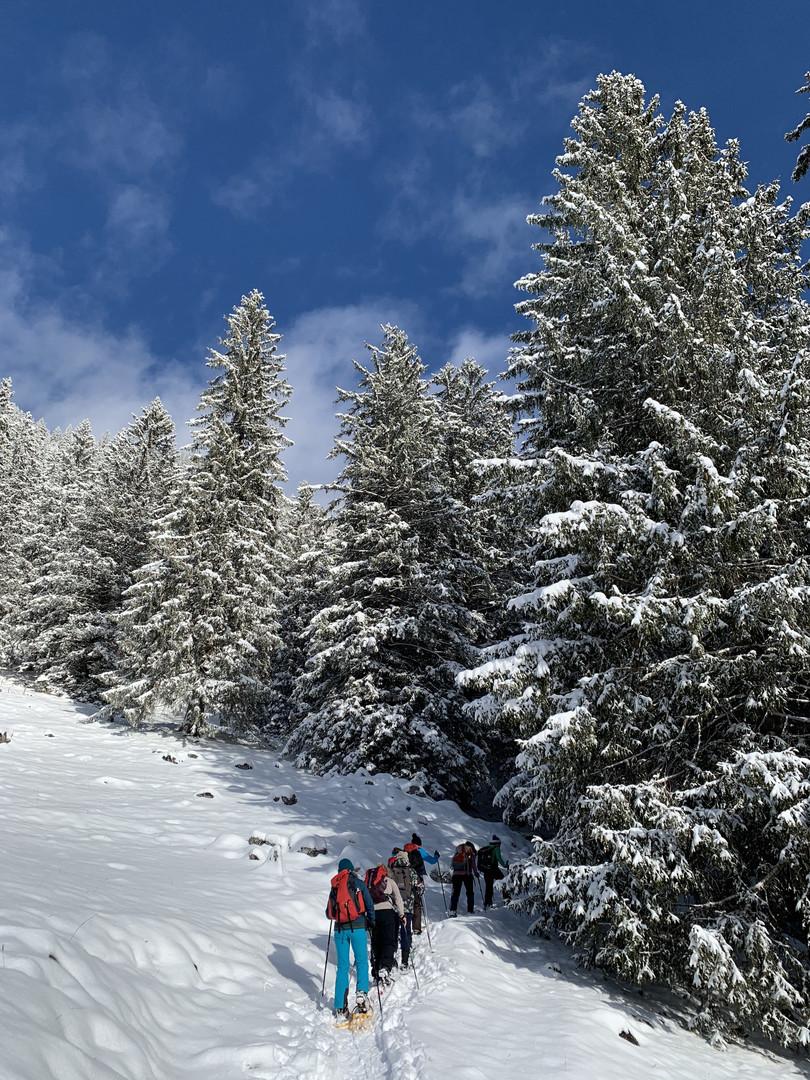 Schneeschuhtour & Yoga Weekend Januar 2020