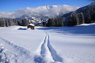 winter-2024112__340.webp