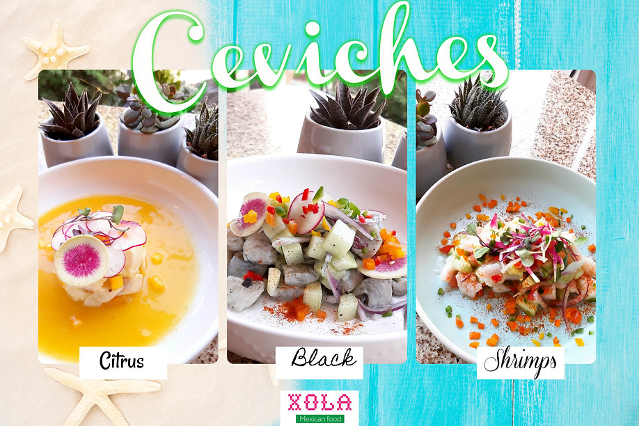 ceviches redes.jpg