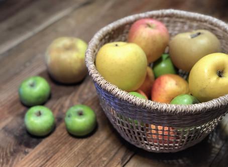 En automne mange des pommes