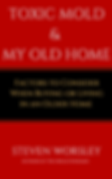 Mold and My Old Home ebook cover.png