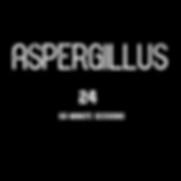 ASPERGILLUS 24 SESSIONS.png