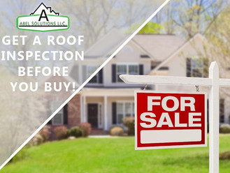 Roof Inspection before you buy!