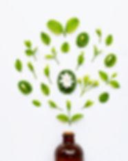 bottle-essential-oil-with-jasmine-flower