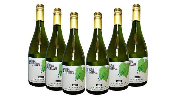 Pack de 6 Chardonnay - Buena Esperanza 2020