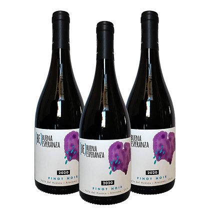 Pack 3 Pinot Noir - Buena Esperanza 2020