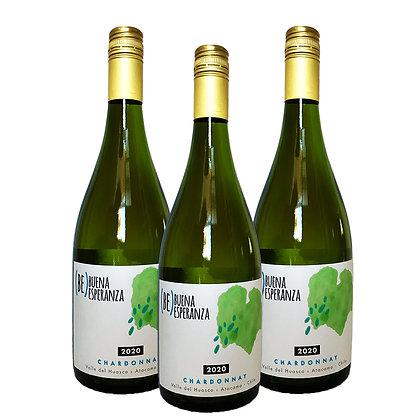 Pack 3 Chardonnay - Buena Esperanza 2020
