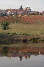 vignes-cotes-roannaises-ambierle.jpg